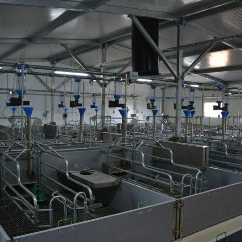 Sektor porodowy z automatycznym systemem żywienia