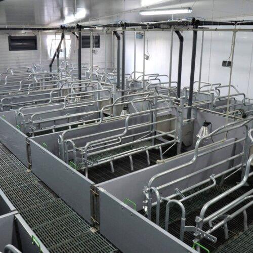 Sektor porodowy - żywienie mokre